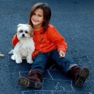 Child Safety With Dogs