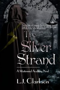 The Silver Strand — Book Blast & Giveaway