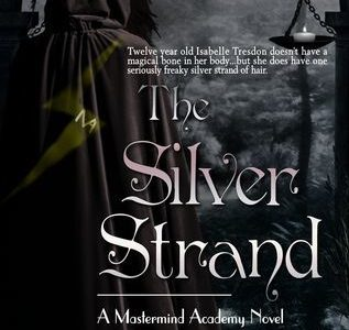 The Silver Strand book cover