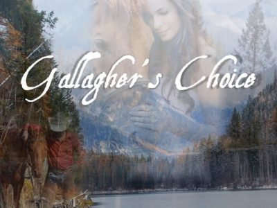 Gallagher's Choice book cover