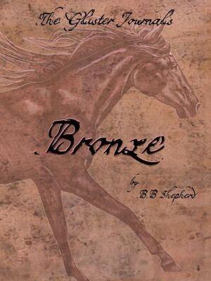 Bronze book cover