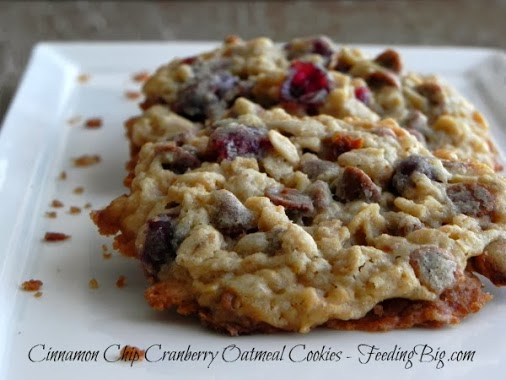 Cinnamon Chip Cranberry Oatmeal Cookies on a white plate