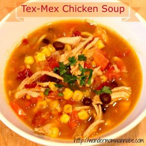 The Best Tex-Mex Chicken Soup Recipe