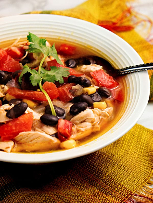 The Best Tex Mex Chicken Soup Recipe