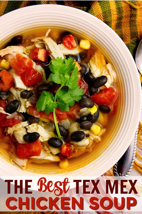 The Best Tex Mex Chicken Soup