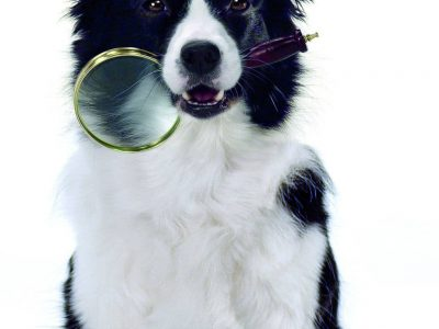 Dog holding a magnifying glass in it's mouth