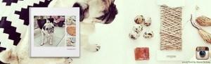 Capture Your Social Media Memories #ad