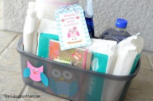 Classroom Cleaning Supply Basket