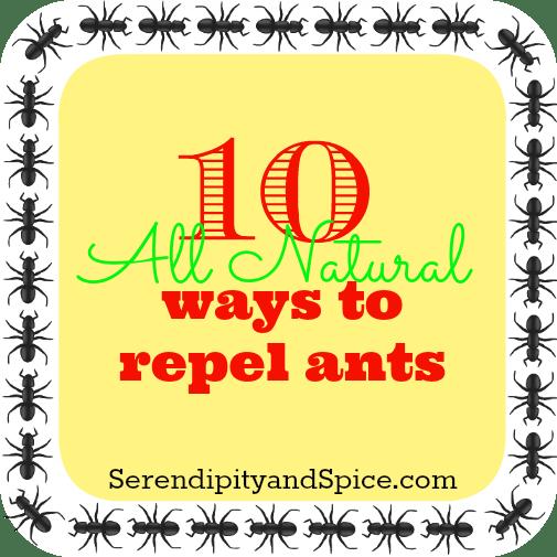 repel-ants