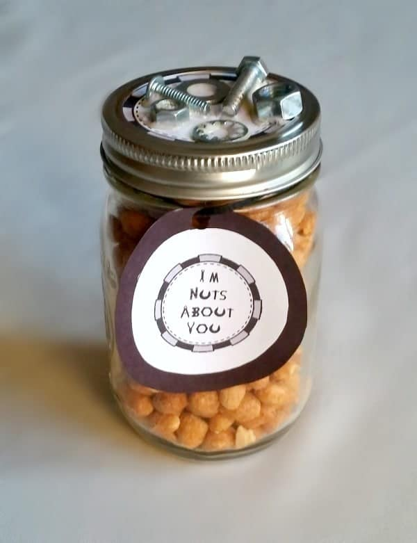 DIY Fathers Day Gift Nuts About You