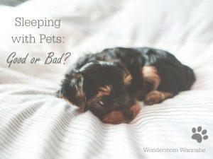 Sleeping With Pets: Good or bad?