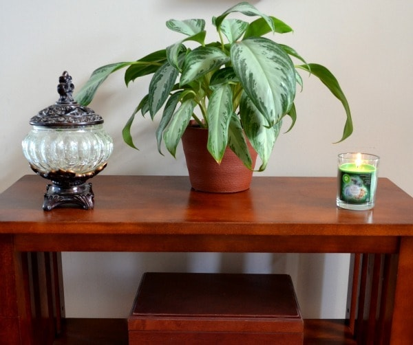 Air Wicks in the Foyer on a table next to a plant
