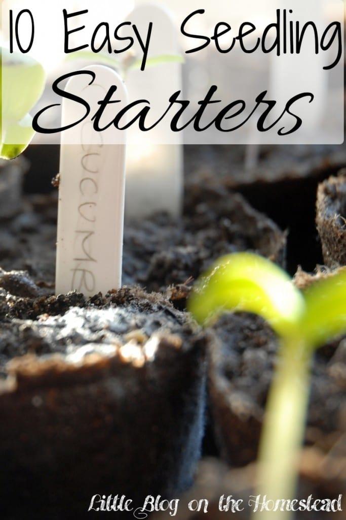 Seedling-Starter
