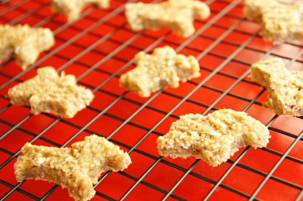 peanut butter oatmeal breakfast animal cookies on a wire rack on a red background