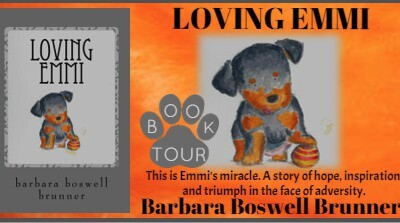 Loving Emmi by Barbara Boswell Brunner book cover