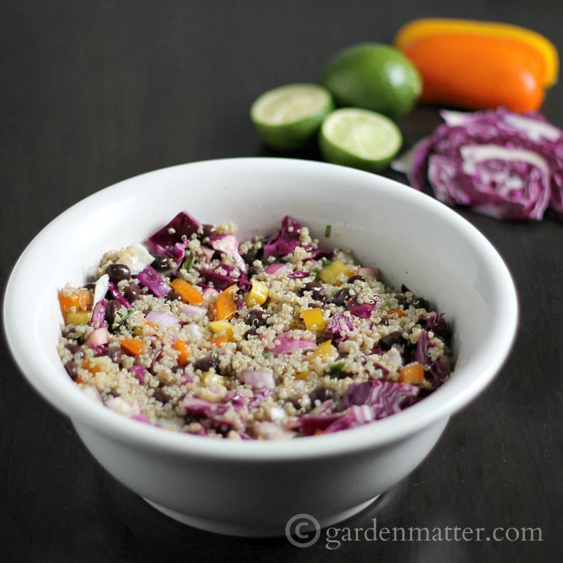 Quinoa-Black-Bean-Lime-Vinaigrette-gardenmatter.com_