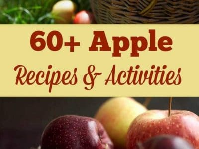 This collection of over 60 apple recipes and activities is sure to inspire some wonderful fall memories.
