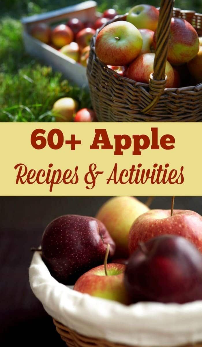 A collection of over 60 apple recipes and activities to help inspire a memorable Fall. The first in a series of seasonal collections. #Fall #apples #applerecipes via @wondermomwannab