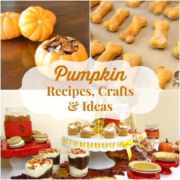 If you love pumpkins, you'll love this collection of pumpkin-themed recipes, crafts and other ideas.