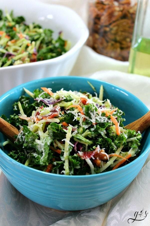Kale and Broccoli Slaw Salad