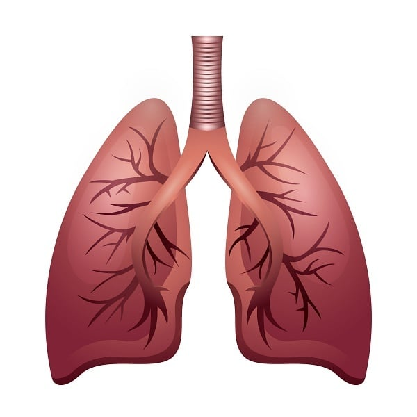 lung-health with a graphic of a lung