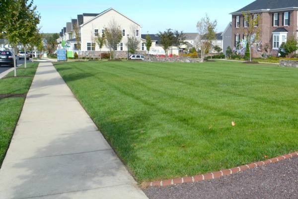 sidewalks and grass in a community