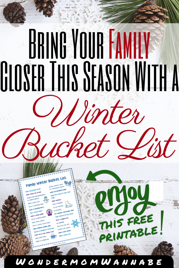 pine cones on a white background with title text reading Bring Your Family Closer This Season With a Winter Bucket List