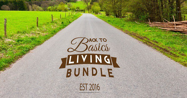 a country road with text overlay reading Back to Basics Living Bundle