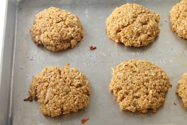 coconut oatmeal protein cookies