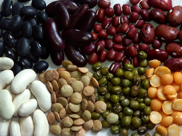 seven different varieties of beans