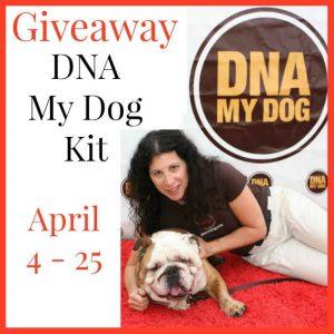 April Giveaway: DNA My Dog