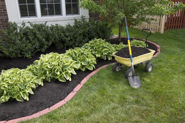 Attractive Easy Landscaping