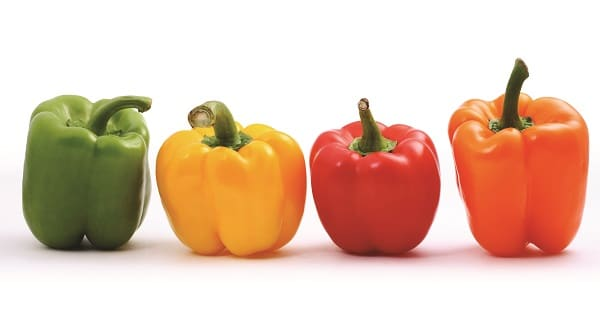 green, yellow, red and orange bell pepper on a white background