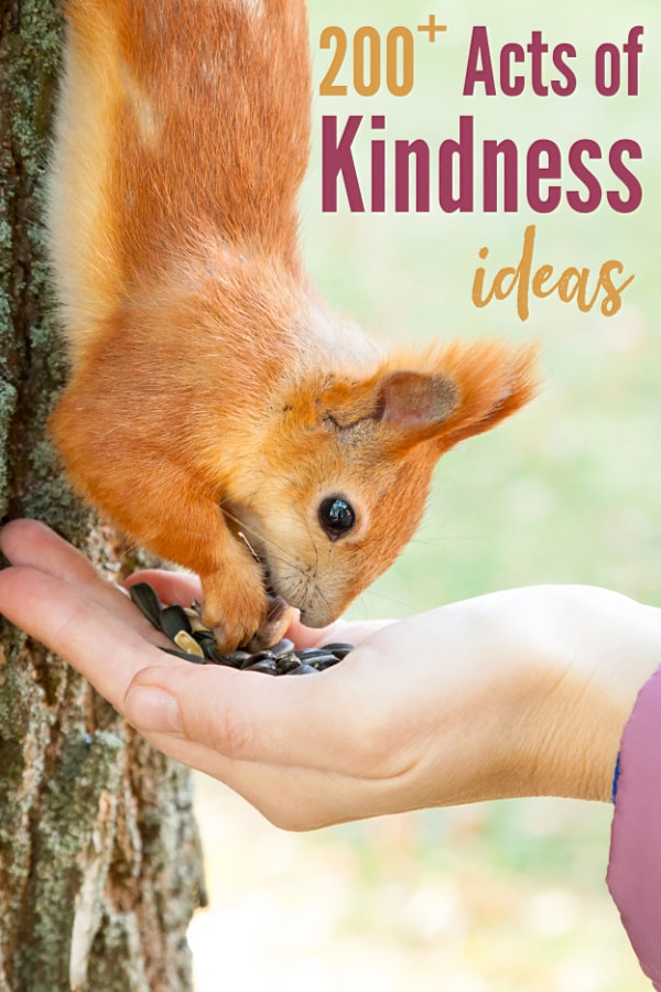 a squirrel headed down a tree stopping to gather seeds from a person's hand with title text reading 200+ Acts of Kindness ideas