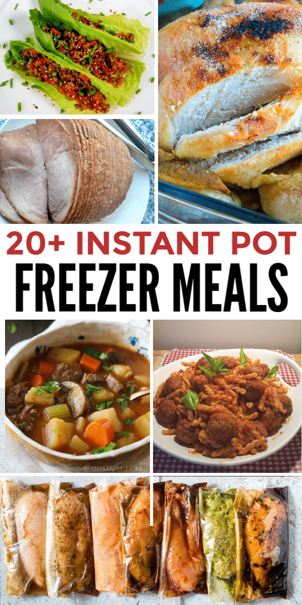 Over 20 Instant Pot Freezer Meal recipes (plus resources for dozens more) that are designed to go from the freezer straight to your Instant Pot. #dumpdinners #instantpot #easyrecipes via @wondermomwannab