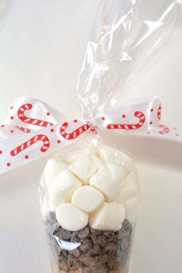 a ribbon tied in a bow on a cone shaped plastic bag filled with marshmallows and mini chocolate chips on a white background