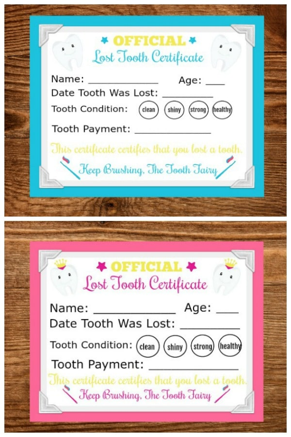 picture about Tooth Fairy Ideas Printable called Printable Teeth Fairy Letter