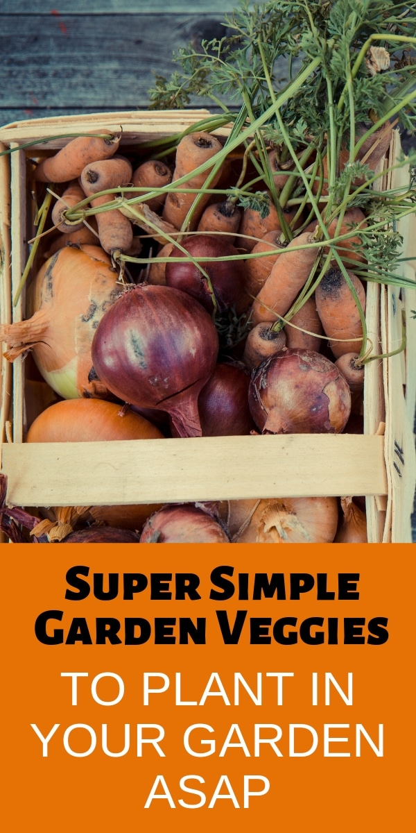 vegetables in a wood box on a wood background with title text Super Simple Garden Veggies To Plant In Your Garden ASAP