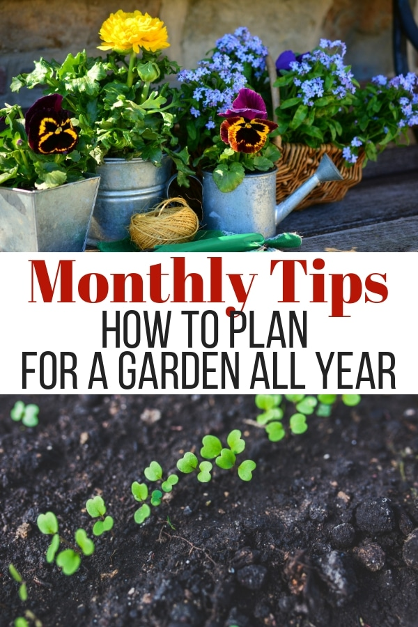 Looking for some month by month gardening tips to help you plan and get ahead of the game? You'll find that and so much more here! #gardening #gardeningtips #garden via @wondermomwannab