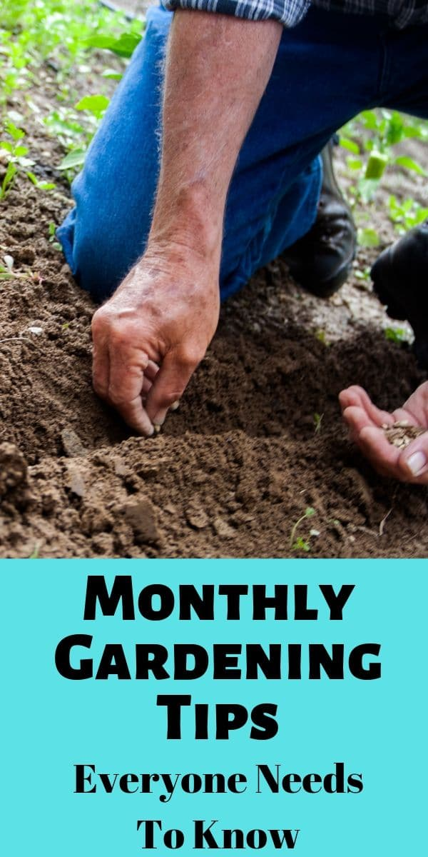 a man planting seeds in the dirt with title text reading Monthly Gardening Tips Everyone Needs to Know