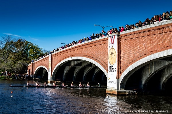 a bridge with lots of people standing on it looking down to watch the people rowing boats on the water
