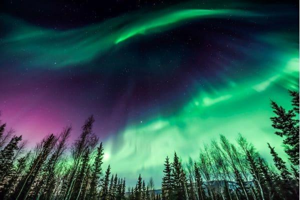 the northern lights in Fairbanks, Alaska